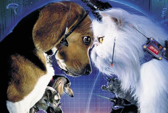 Farmina Pet Foods: Filmes com cães e gatos 4