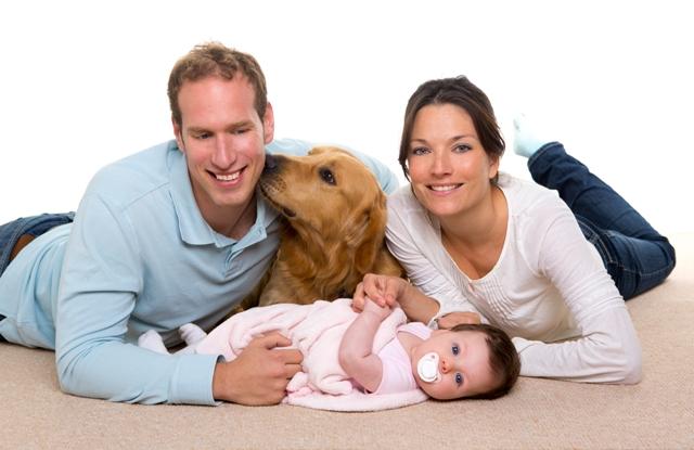 Cheiro de bebe recém-nascido e o pet