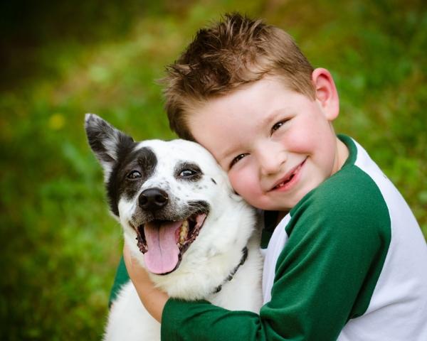 Criança e cachorro amizade sem limites