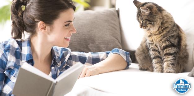 Capa de '8 livros sobre gatos que você não pode deixar de ler'
