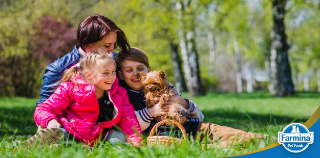 Capa de 'Saiba se o cão é o pet ideal para você e sua família'