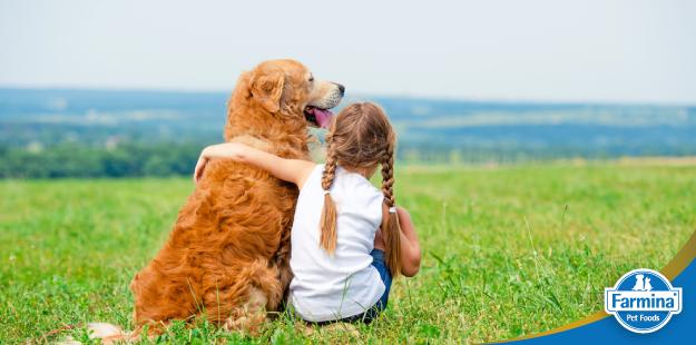 O convívio saudável entre pets e crianças