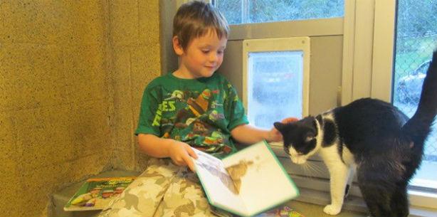 Capa de 'Crianças aprendem a ler em companhia de gatos'