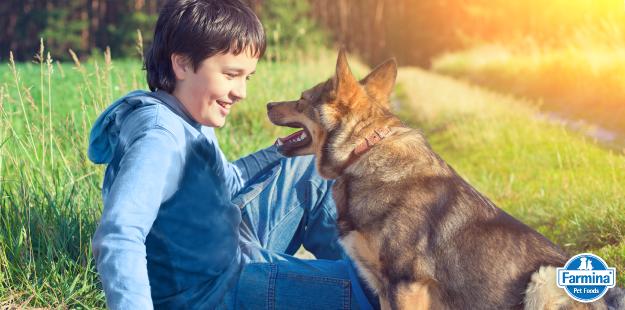 Capa de '4 razões para você conversar com seu cão'