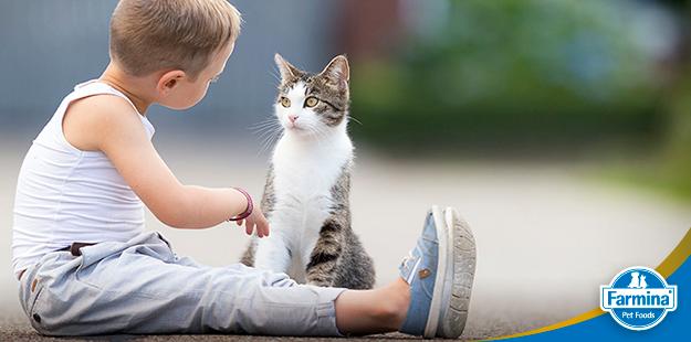 Capa de 'Como cães e gatos podem ajudar no desenvolvimento de crianças'