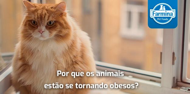 Capa de 'Porque os animais estão se tornando obesos?'