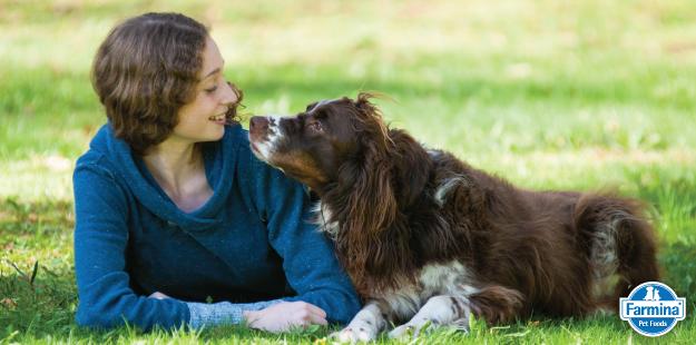 Capa de '8 dicas para fazer seu cão feliz'