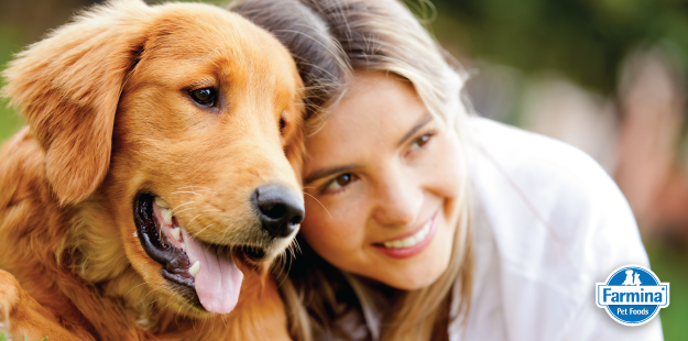 Capa de 'Imprinting em cães: saiba a sua importância'