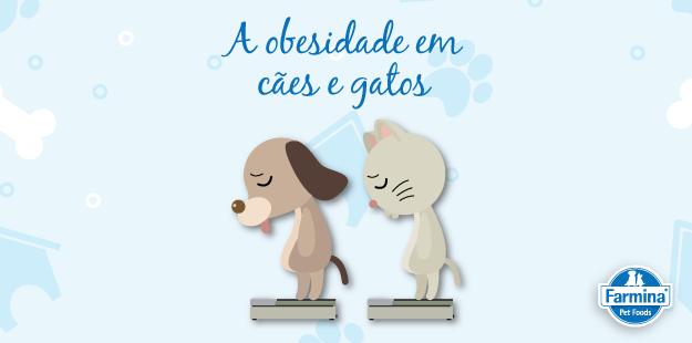 Capa de 'A obesidade em cães e gatos'